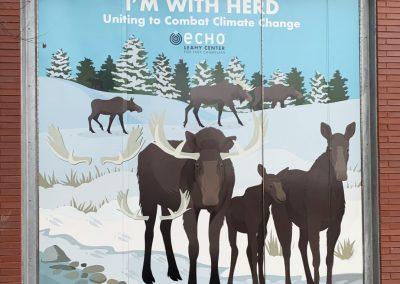 ECHO Moose Window Mural